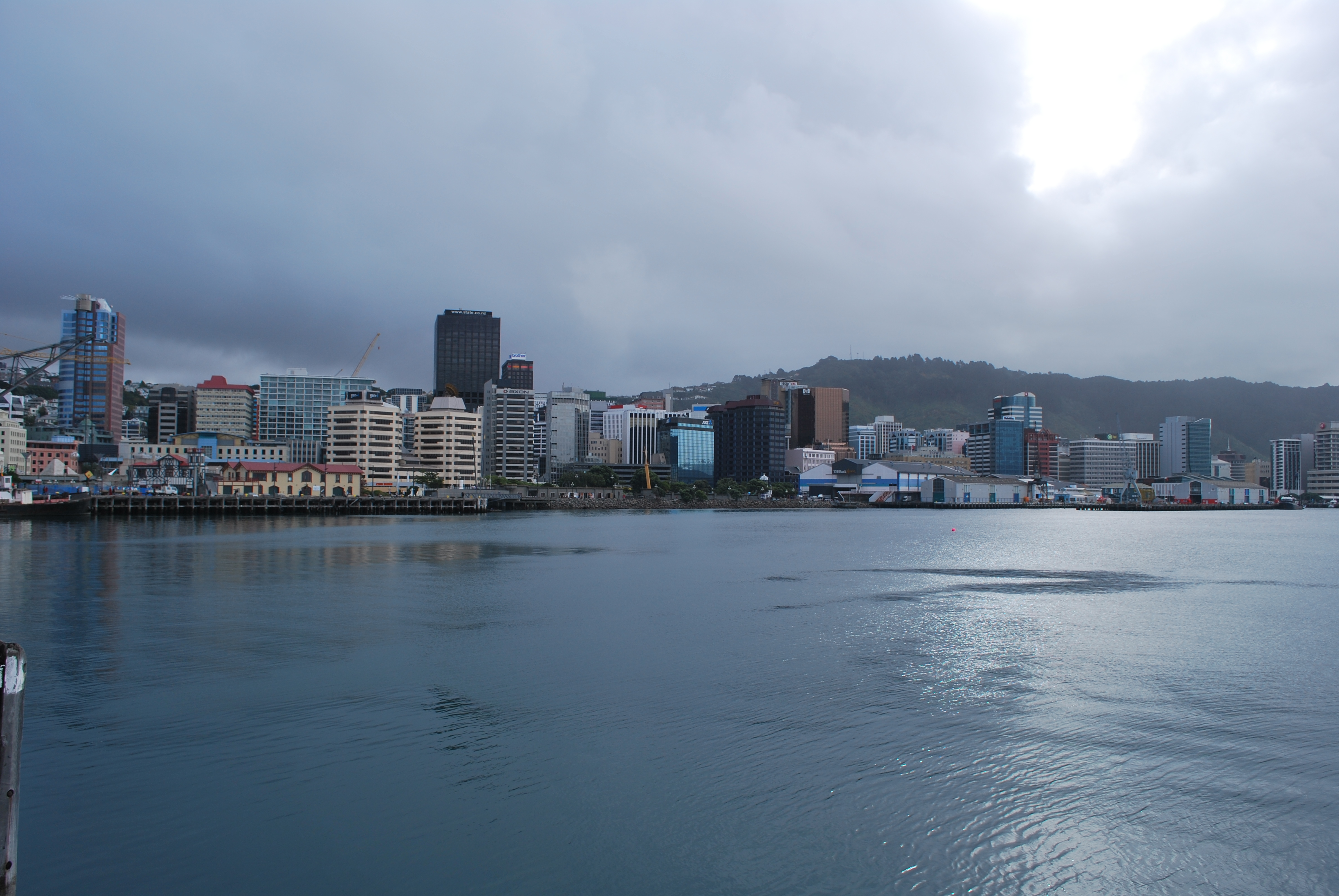 Living With Hippies in Wellington