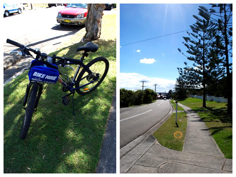 bikeridecollage
