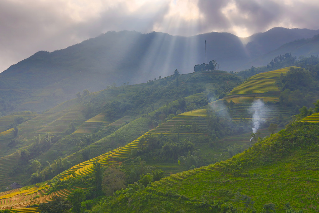 Ray over terrace rice field in Sapa - Trung Ch?i.